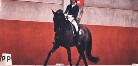 (Nederlands) Grand Prix