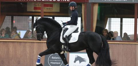 Clinic exterieur en beweging Friese paarden met en bij Frenk Jespers