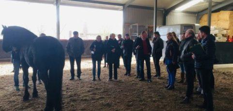 Frenk Jespers: 'maak de koppeling tussen keuring op exterieur en functionaliteit als sportpaard'